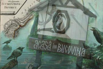 Acasa în Ducatul Bukowina