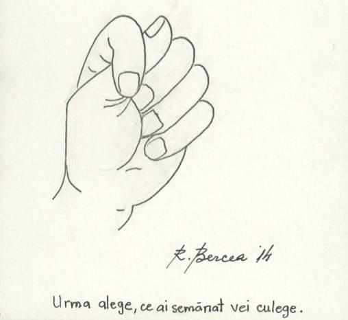Radu Bercea 5