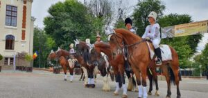 The horse&Madalina 001
