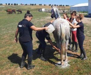 The horse&Madalina 002